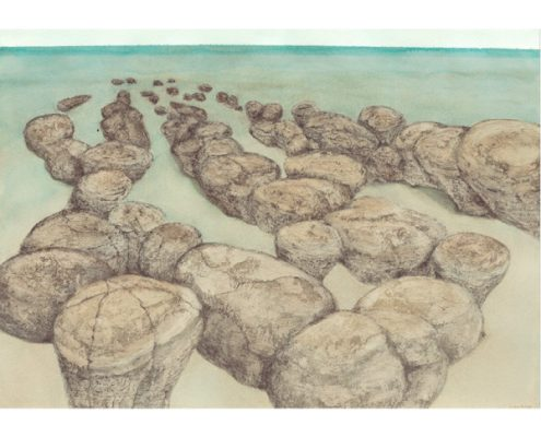 Stromatolites Hamelin Pool Shark Bay watercolour and graphite on Arches by Sue Helmot Artist who is based in Carnarvon in the remote Gascoyne region of Western Australia