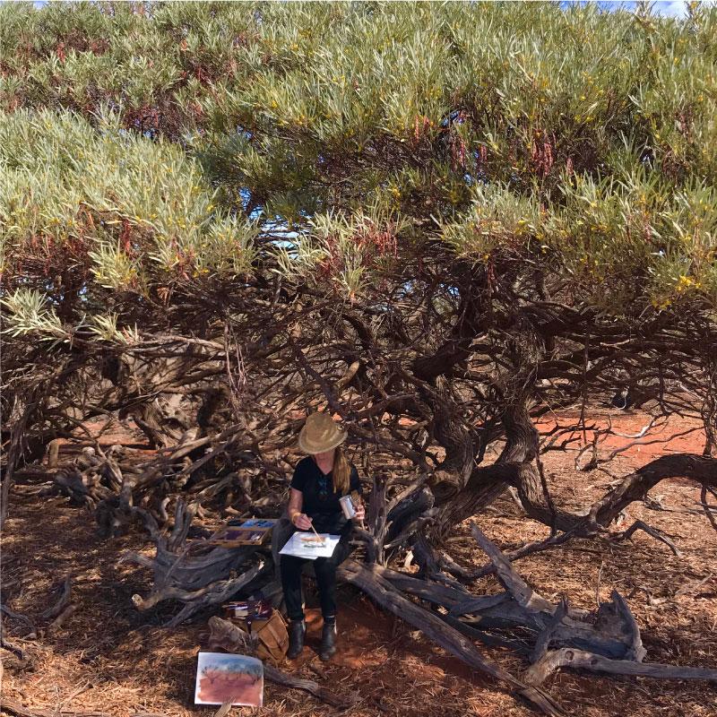 Sue Helmot Artist painting in the rangelands of the Gascoyne region of Western Australia where she is based