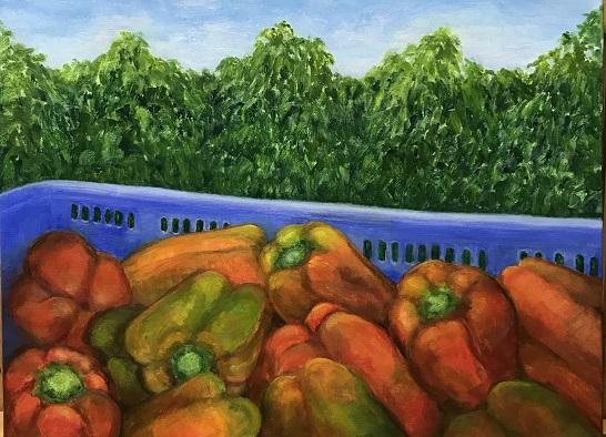 Capsicum-Harvest-Sue-Helmot-Artist