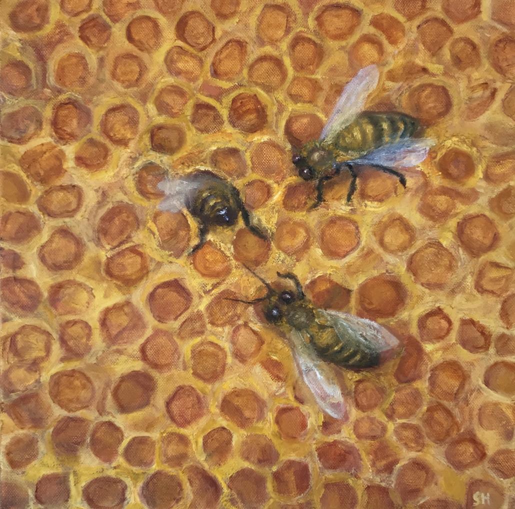 Honeybees - Sue-Helmot-Artist-Australia
