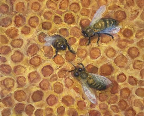 Honey bees painting oil on canvas by Western Australian artist Sue Helmot