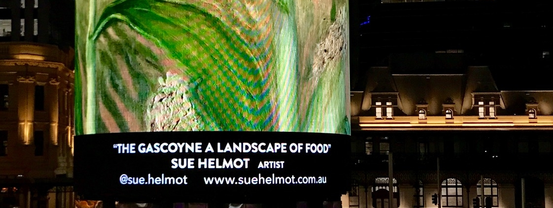 Exhibition by Sue Helmot Artist on the digital tower at Yagan Square in Perth CBD