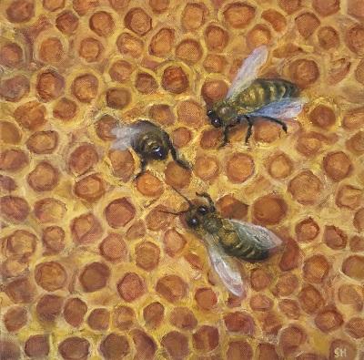 Honey Bees painting oil on canvas by Western Australian artist Sue Helmot who is based in Carnarvon in the Gascoyne region.