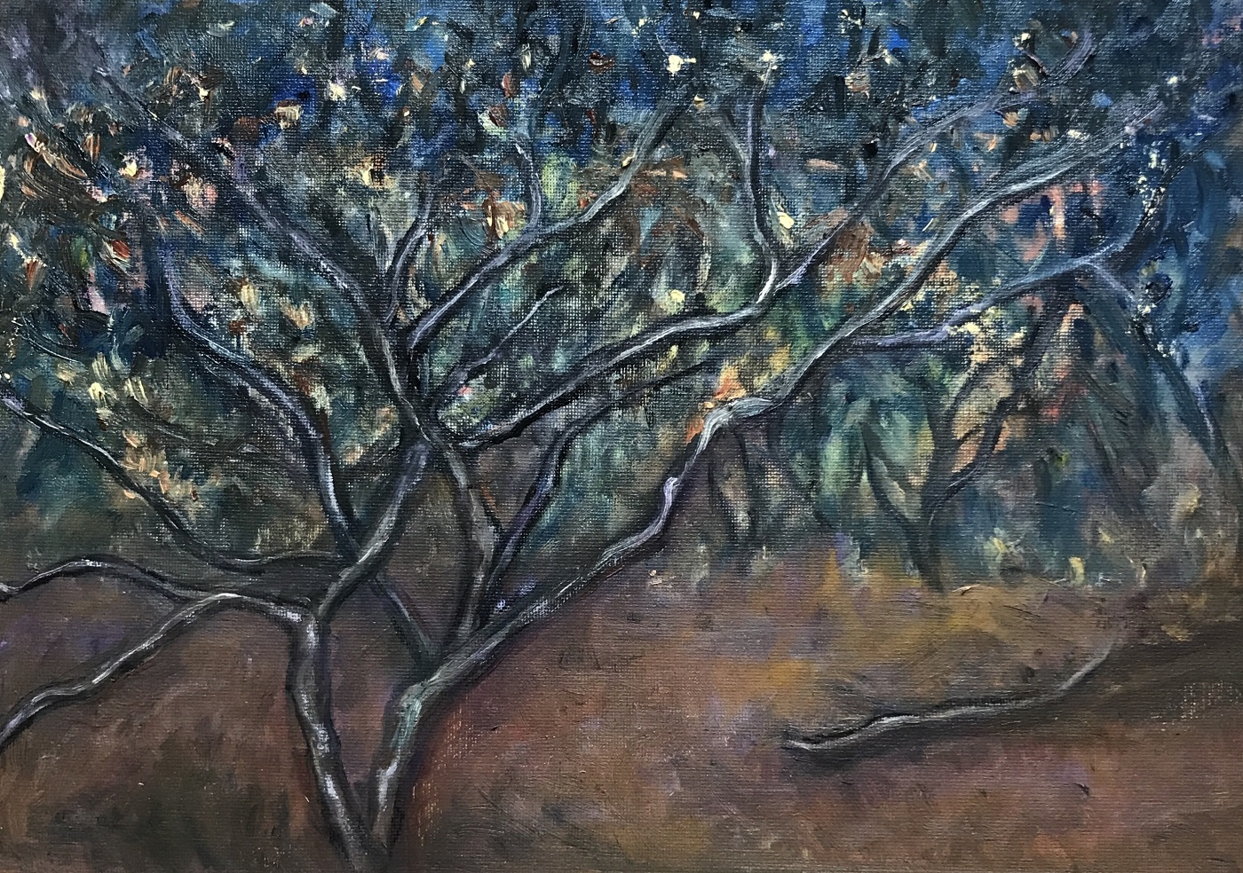 Nightfall- Gascoyne-Sue-Helmot-Artist