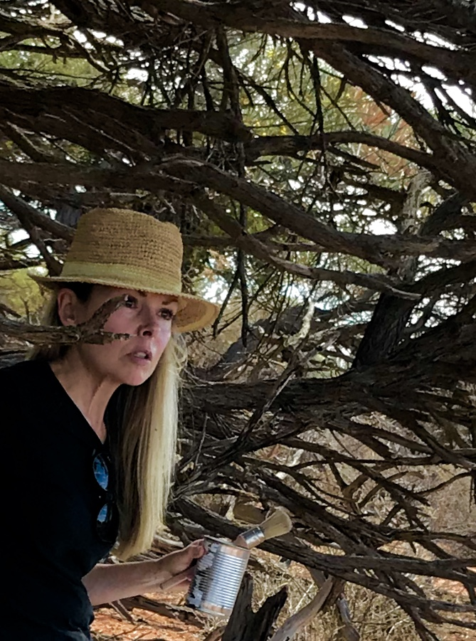 Sue Helmot Australian Artist